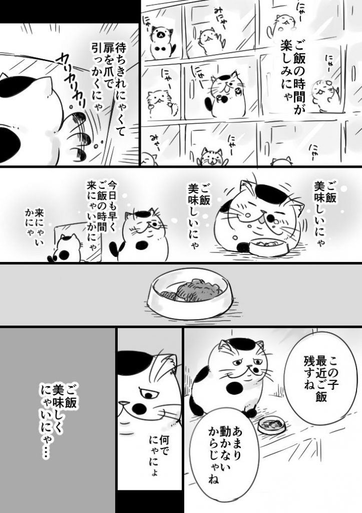 おじさまと猫5話
