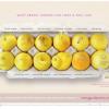 女性必見!レモンを使って「乳がんの症状」を表した12のサイン