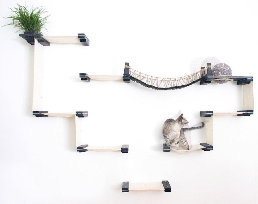 猫 遊び場9
