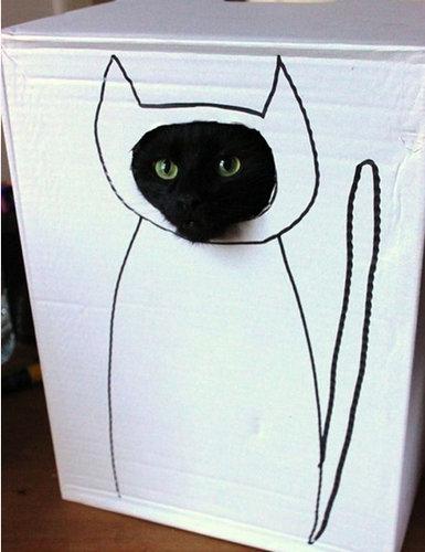 猫 顔ハメ看板4