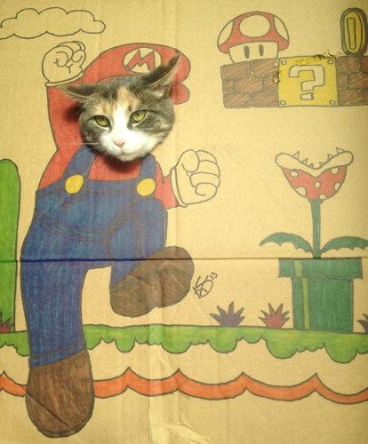 猫 顔ハメ看板8