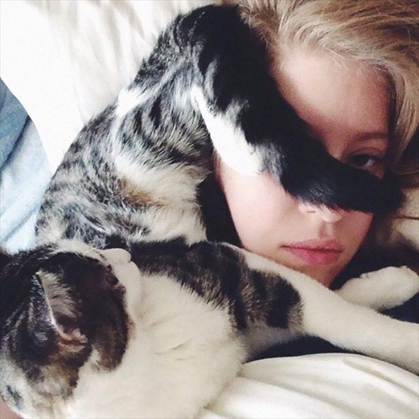 邪魔をしてくる猫7
