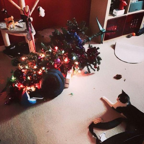 クリスマスツリー 猫のおもちゃ21