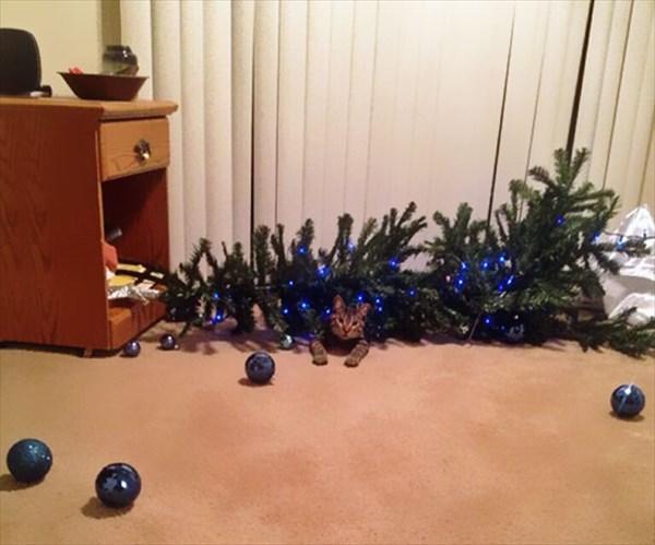 クリスマスツリー 猫のおもちゃ3
