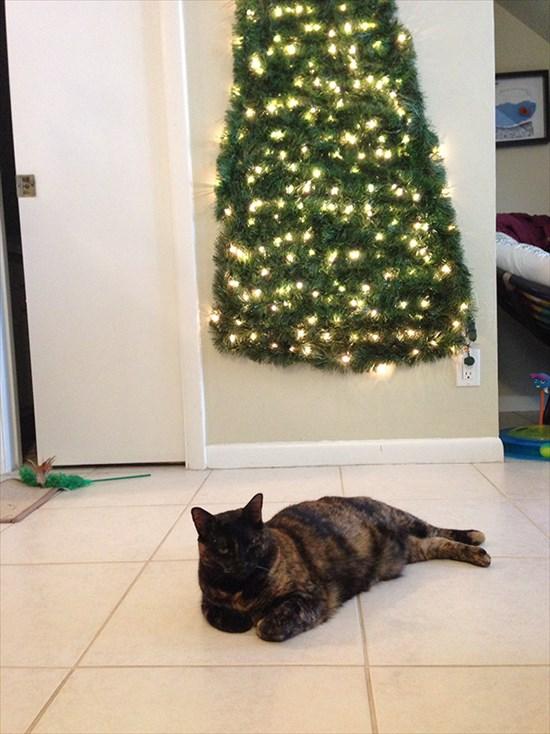 ペットからクリスマスツリーを守る対策2