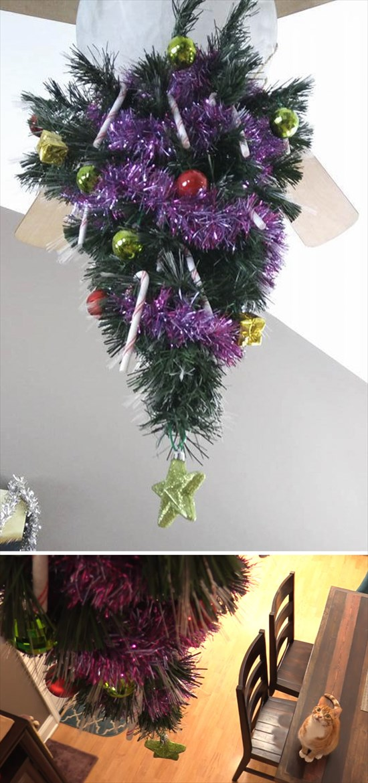 ペットからクリスマスツリーを守る対策11