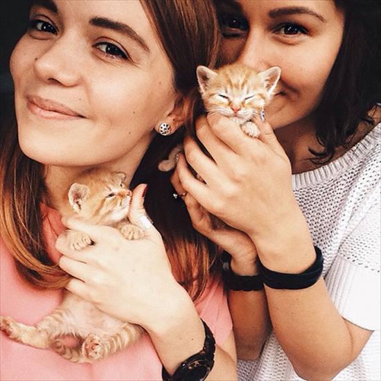 2匹の保護子猫。一緒に仲良く成長していき立派な大人猫に 3