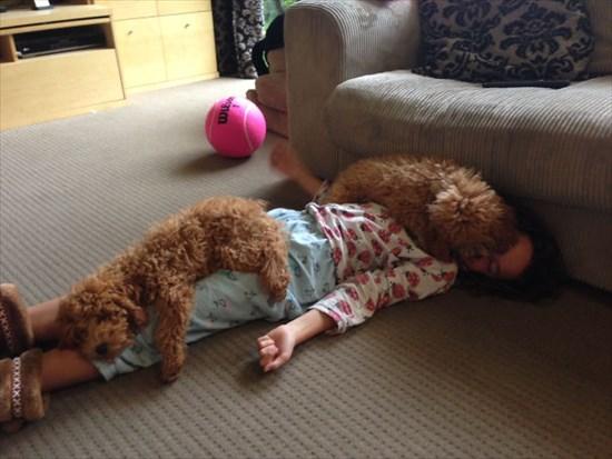 子供が生まれたら犬を飼いなさい 子供と犬の写真11