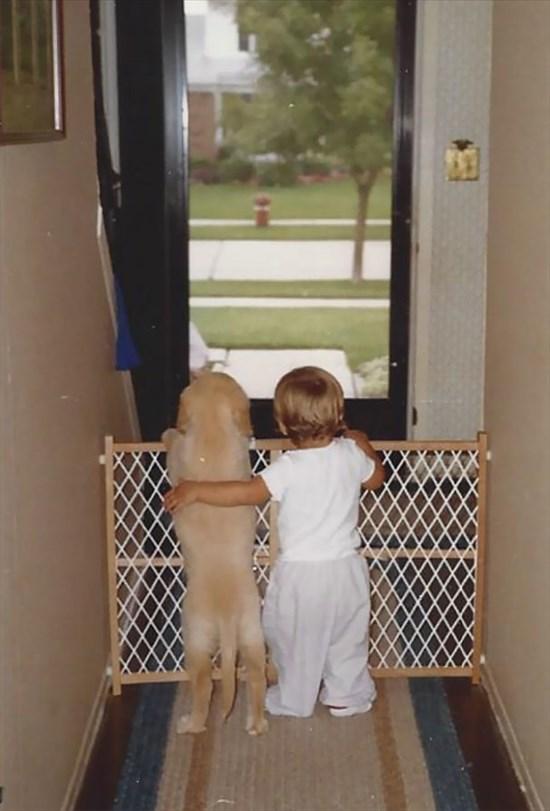 子供が生まれたら犬を飼いなさい 子供と犬の写真20