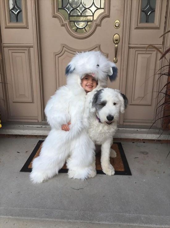 子供が生まれたら犬を飼いなさい 子供と犬の写真8
