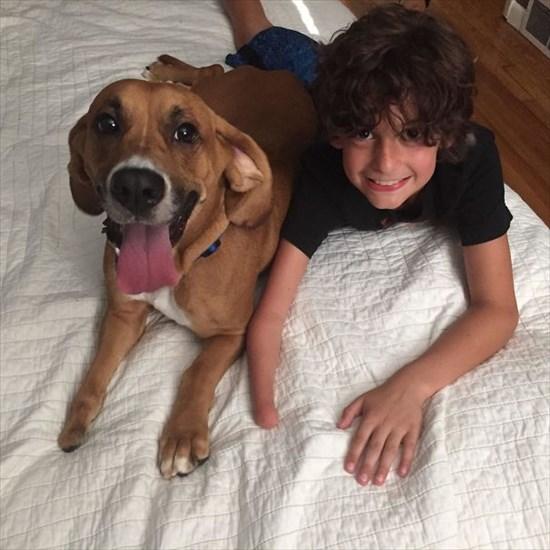 子供が生まれたら犬を飼いなさい 子供と犬の写真3