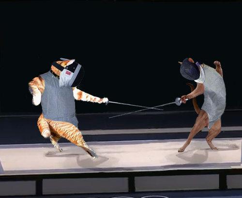 カンフーポーズを決める猫 コラ画像10