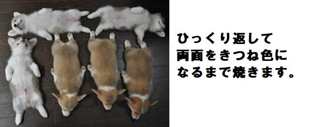 犬の写真で一言ボケて!1