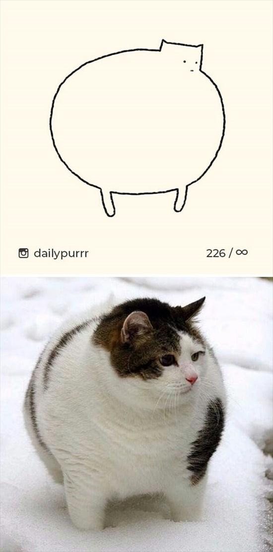 シンプルな猫のイラスト 11