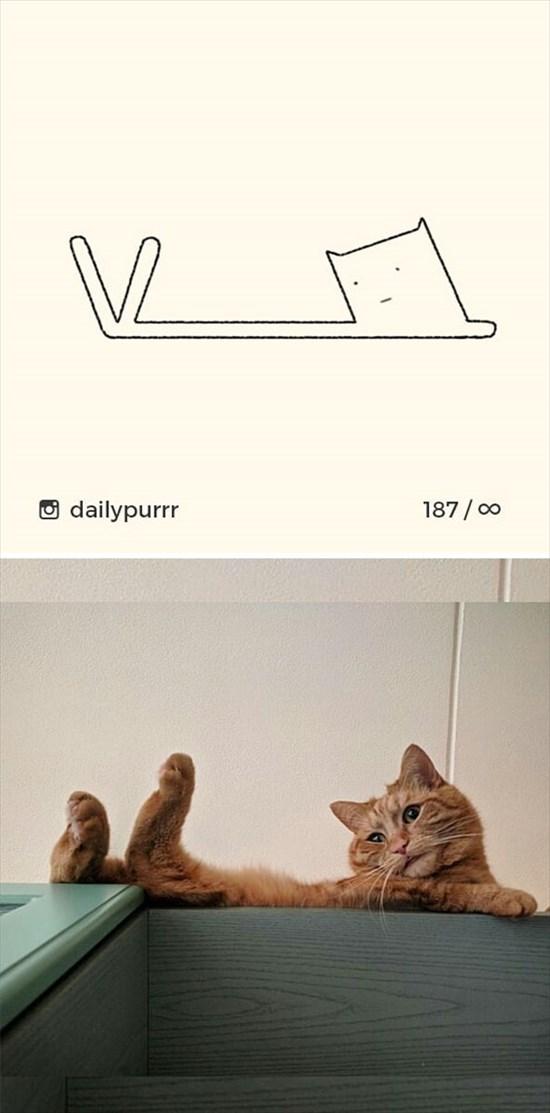 シンプルな猫のイラスト 12