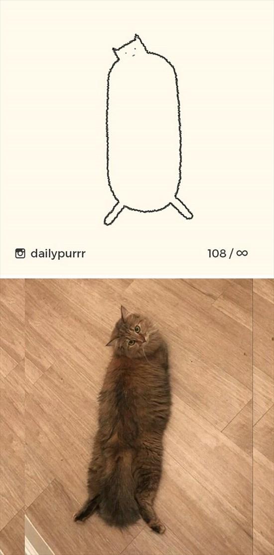 シンプルな猫のイラスト 14