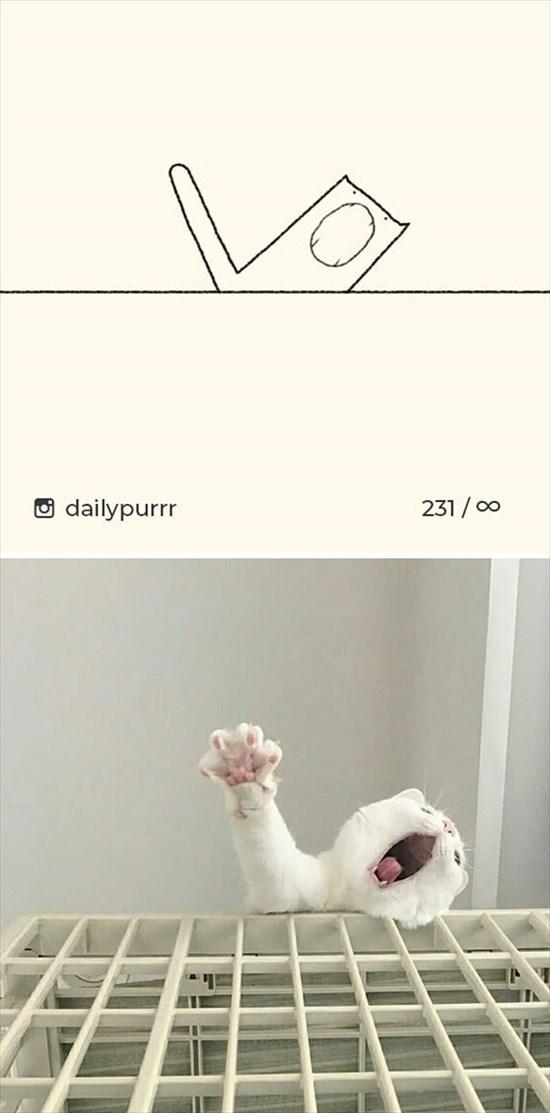 シンプルな猫のイラスト 4