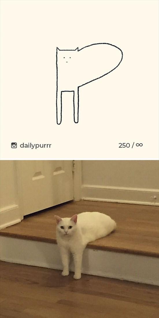 シンプルな猫のイラスト 3