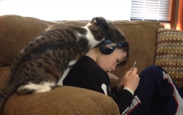 スリスリ攻撃が激しい猫 3