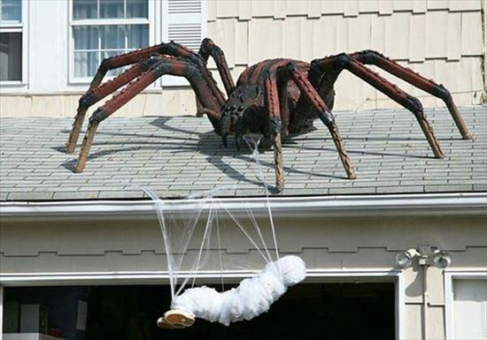 ハロウィンの装飾が怖すぎる家 写真14
