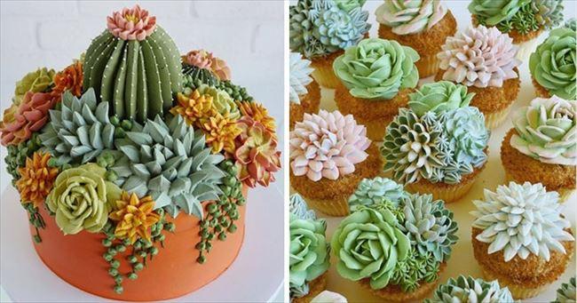 ぷくぷく可愛い 多肉植物ケーキ 写真1