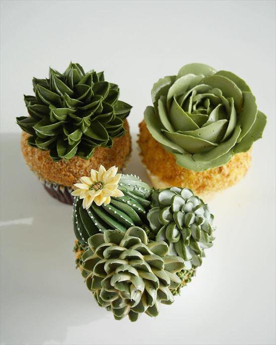 ぷくぷく可愛い 多肉植物ケーキ 写真10