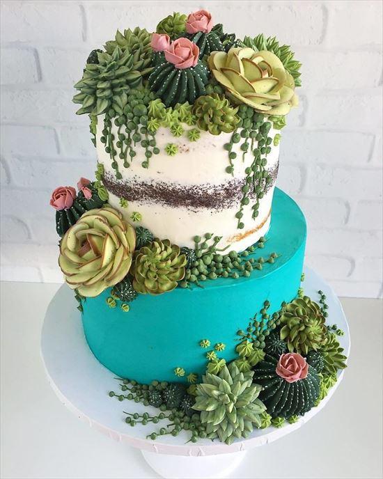 ぷくぷく可愛い 多肉植物ケーキ 写真11