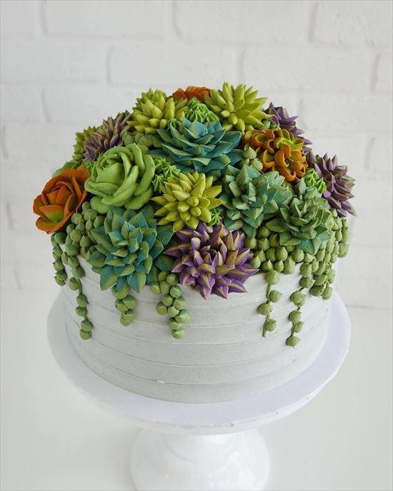 ぷくぷく可愛い 多肉植物ケーキ 写真12