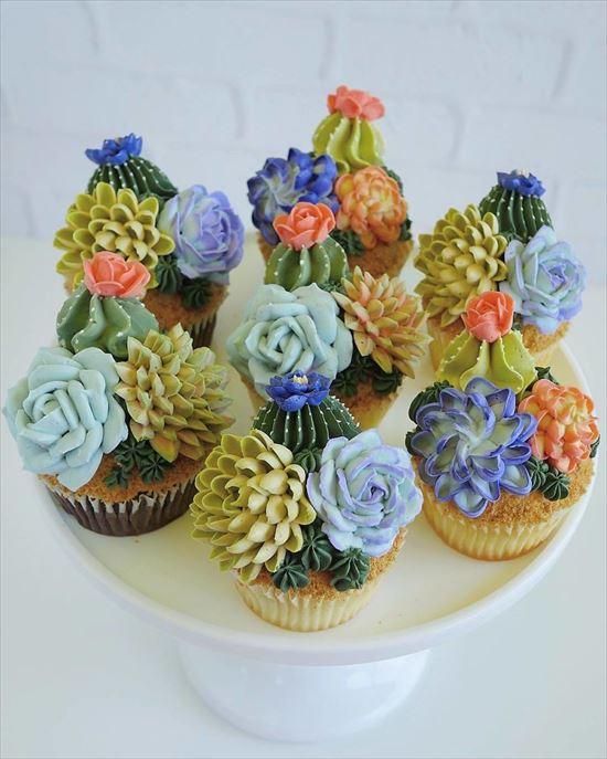 ぷくぷく可愛い 多肉植物ケーキ 写真14