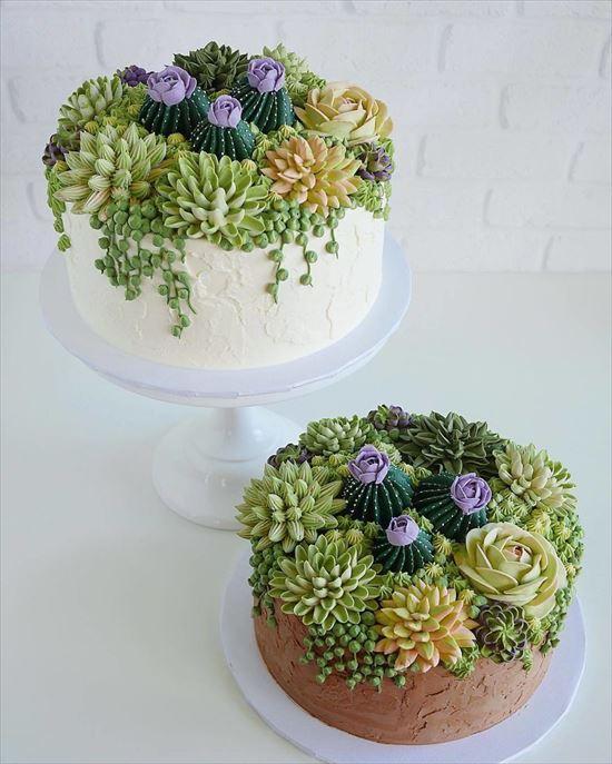 ぷくぷく可愛い 多肉植物ケーキ 写真15