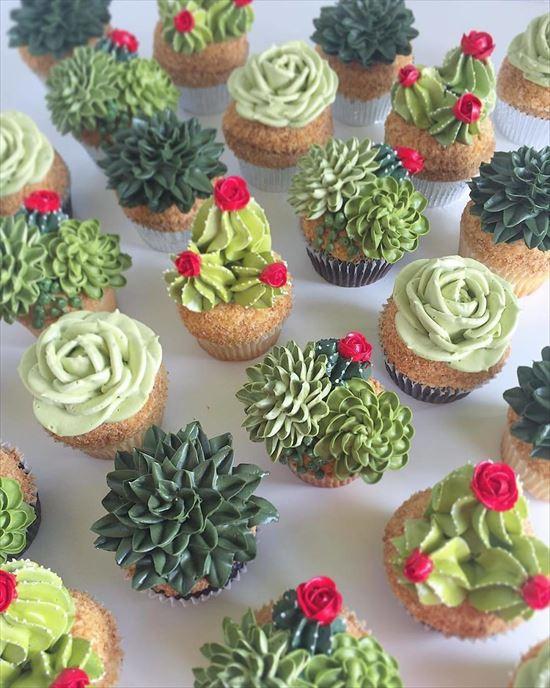 ぷくぷく可愛い 多肉植物ケーキ 写真17