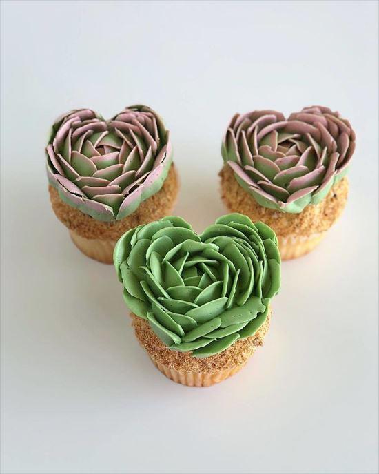 ぷくぷく可愛い 多肉植物ケーキ 写真18