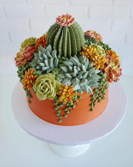 ぷくぷく可愛い 多肉植物ケーキ 写真4