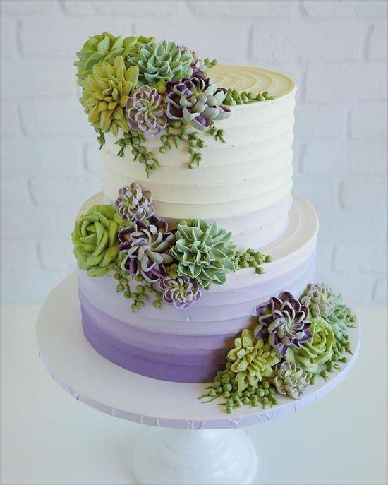 ぷくぷく可愛い 多肉植物ケーキ 写真6