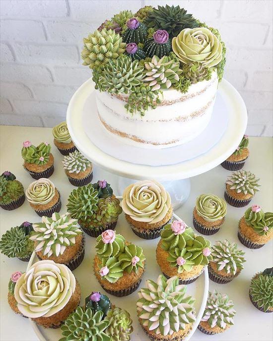 ぷくぷく可愛い 多肉植物ケーキ 写真7