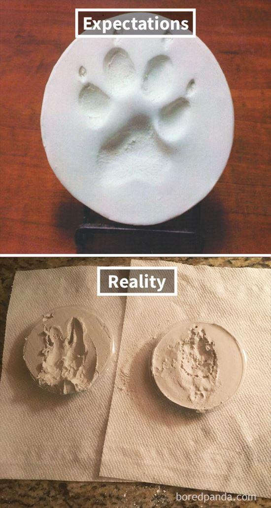 これが理想と現実 物写真13
