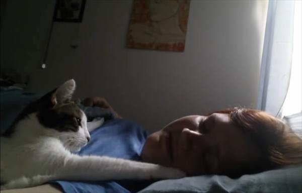 肉球でポンポン。可愛いお手手で飼い主を優しく起こす猫 画像2