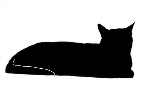 飼い主「うちの猫は10分程こんな体勢で・・・」→ありえない格好で寝てる猫 画像1