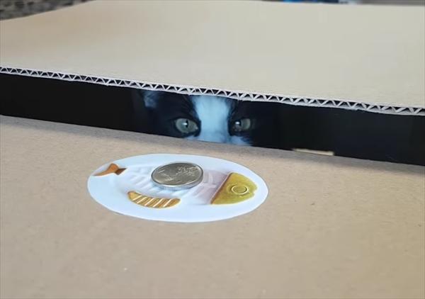 おもちゃの猫貯金箱を本物で再現してみたらこんな感じに・・・!